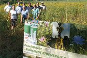 """""""Blühende Bioenergie Dorsten"""""""