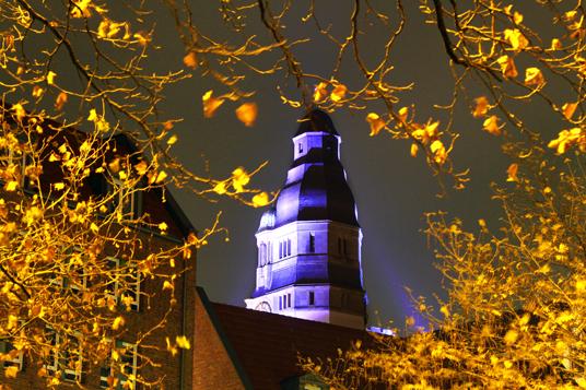 Das Bild zeigt das illuminierte Rathaus