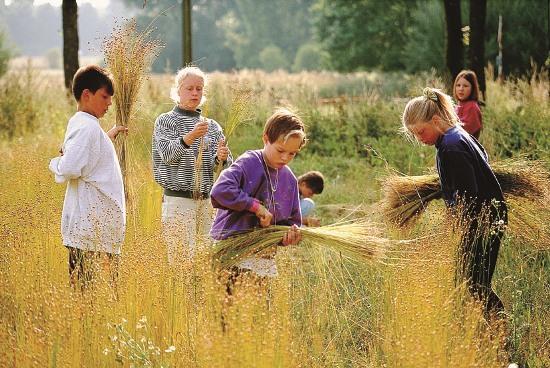 Kinder beim spielen im Gras