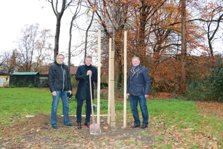Symbolisch griffen Bürgermeister Christoph Tesche sowie die Vorsitzenden des Ausschusses für Gebäudewirtschaft, Grünflächen und Umwelt, Volker Schäper und Johannes Quinkenstein bei der Pflanzung der Esskastanie im Stadtgarten zur Schaufel.