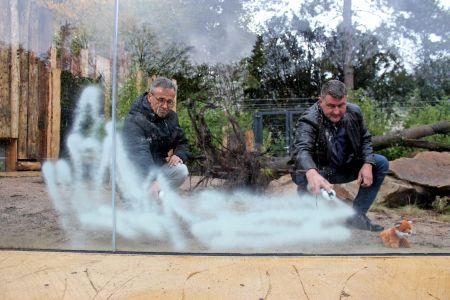 Pressefoto Fuchsgehege -  Besprühten die Scheiben - Daniel Kroll, Vorstand Förderverein Tierpark und Tierparkleiter Stefan Klinger.