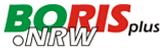 Logo BorisPlus