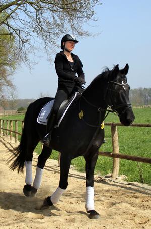 Reiterin auf Pferd