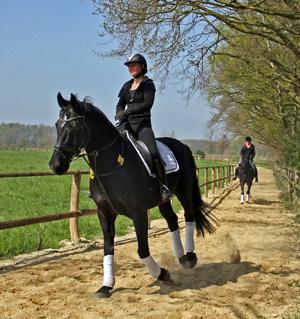 Zwei Reiterinnen