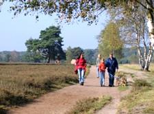 Wanderer in der Westruper Heide