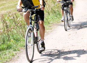 Bild von Mountainbikern foto stadtagentur