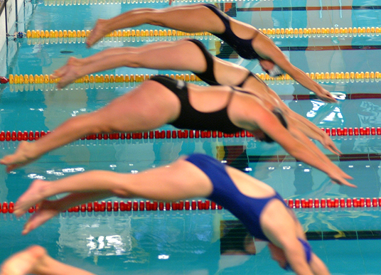 Das Bild zeigt Schwimmer beim Sprung vom Startblock