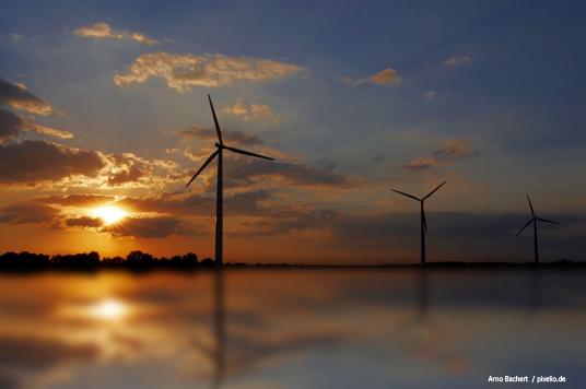 Das Bild zeigt Windräder