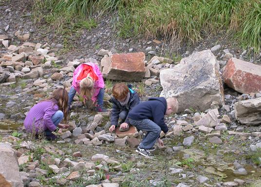 Das Bild zeigt Kinder am Hahnenbach