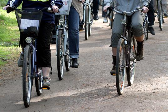 Das Bild zeigt eine Fahrradtour