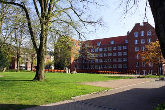 Das Bild zeigt den Rathauspark