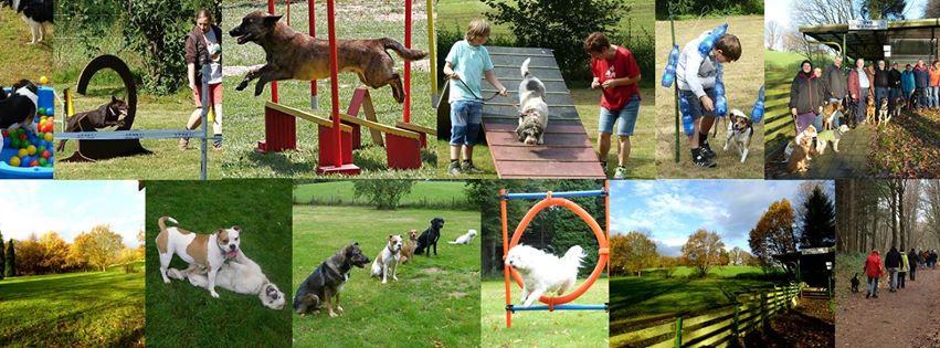 Hundesportverein Haltern am See e.V.