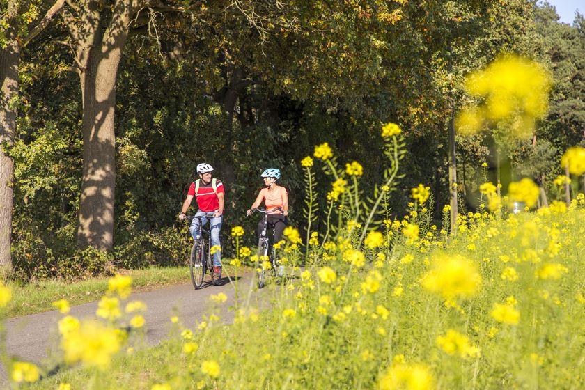 Radfahrer auf der Hohe Mark RadRoute