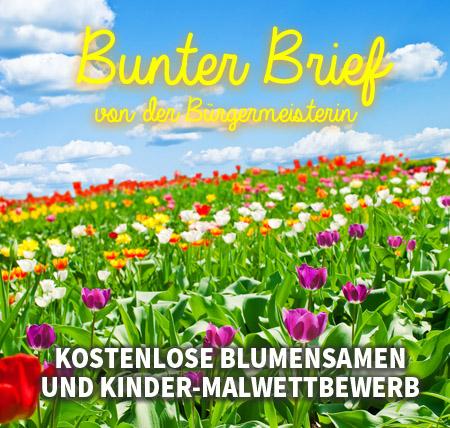Auf dem Bild: Blumenwiese. Text im Bild: Bunte Briefe, Kostenlose Blumensamen und Kinder-Malwettbewerb.